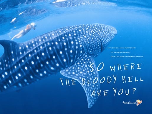 Tourism Australia Whale Shark