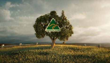 Australian Grown Tree TV ad
